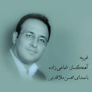 Mohsen Mollaghadimi – Gharibe