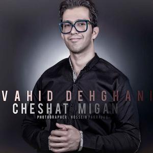 Vahid Dehghani – Cheshat Migan