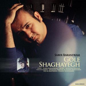 Saber Barandkam – Gole Shaghayegh