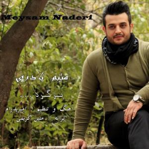 Meysam Naderi – Bargard