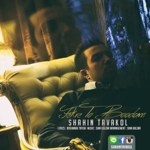 Shahin Tavakol – Fekre To Bodam