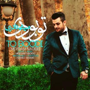 Meysam Naderi – To Boodi
