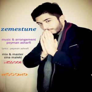 Peyman Ashrafi – Zemestoone