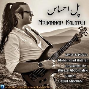 Mohammad Kalateh – Pole Ehsas