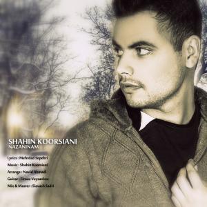 Shahin Koorsiani – Nazaninam