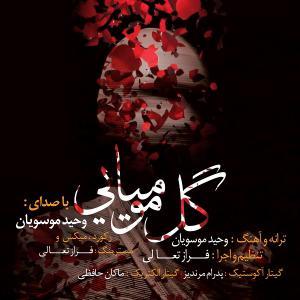 Vahid Mousavian – Gole Mumiyaee