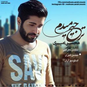 Mohsen Amiri – Tarjih Midam