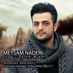 Meysam Naderi – Delam Mige
