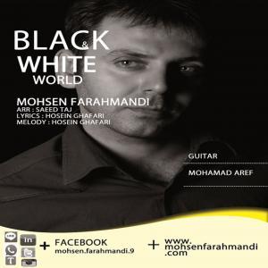 Mohsen Farahmandi – Black Va White