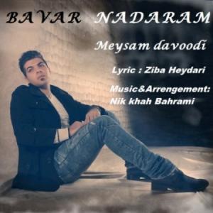Meysam Davoodi – Bavar Nadaram