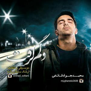 Mohammad Javad Ghaneei – Delam Gereft