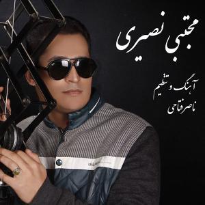 Mojtaba Nasiri – Deltang