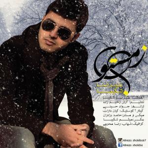 Alireza Shakiba – Winter