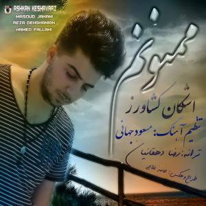 Ashkan Keshavarz – Mamnoonam