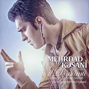 Mehrdad Kasani – IL Donumu