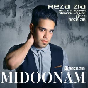 Reza Zia – Midoonam