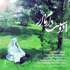 Hamed Taha – Madar