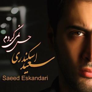Saeed Eskandari – Hes Nemikardam