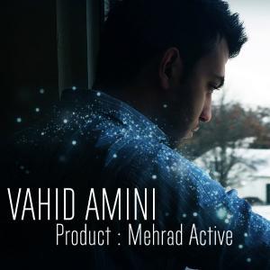 Vahid Amini – Ba Ghalb Man Chikar Dari