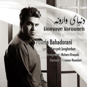 Pouria Bahadorani – Donyaye Varouneh
