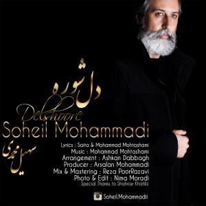 Soheil Mohammadi – Del Shore