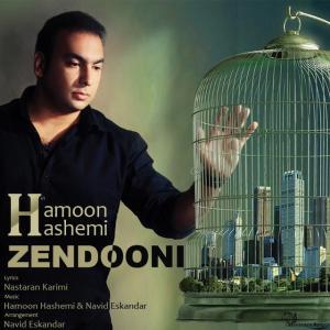 Hamoon Hashemi – Zendooni
