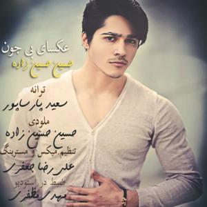 Hossein Hosseinzadeh – Aksaye Bi Jon