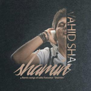 Vahid Shad – Shamim (Remix)