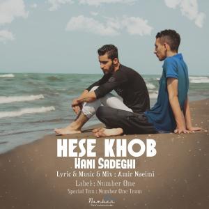 Hani Sadeghi – Hese Khob