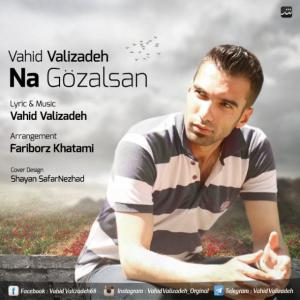Vahid Valizadeh – Na Gozalsan