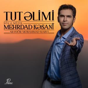 Mehrdad Kasani – Tut Alimi