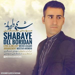Mehdi Asgari – Shabaye Del Boridan