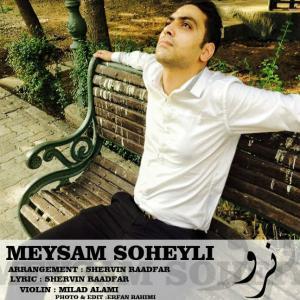 Meysam Soheyli – Naro