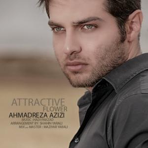 Ahmadreza Azizi – Gole Delfarib
