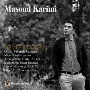 Masoud Karimi – Nemishenasam