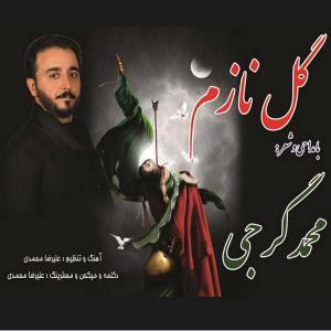 Mohammad Gorji – Gole Nazam