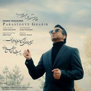 Saeed Shayesteh – Parastooye Gharib