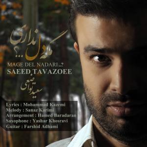 Saeed Tavazoee – Mage Del Nadari