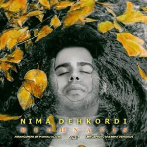 Nima Dehkordi – Meghnatis