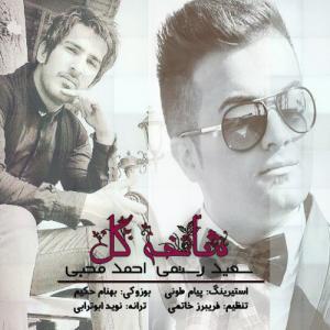 Saeed Rostami – Shakhe Gol (Ahmad Mohebi)