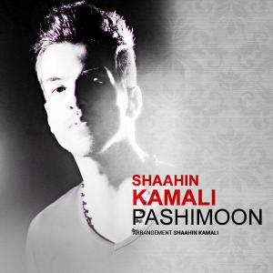 Shaahin Kamali – Pashimoon