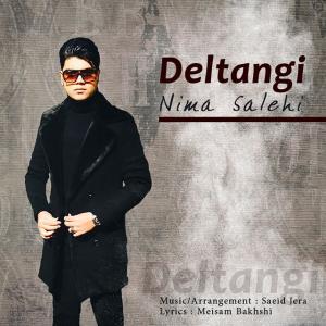 Nima Salehi – Deltangi