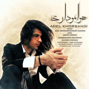 Adel Khorsandi – Havamo Dari