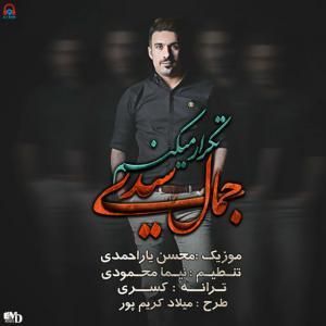 Jamal Seyedi – Tekrar Mikonam