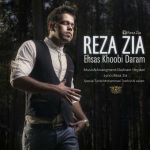 Reza Zia – Ehsase Khoobi Daram