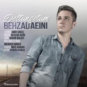 Behzad Aeini – Deltangetam