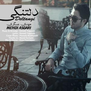 Mehdi Asgari – Deltangi