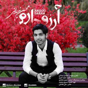 Mohsen Meydani – Arezoo Daram