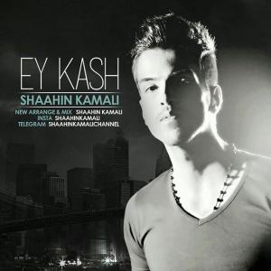 Shaahin Kamali – Ey Kash
