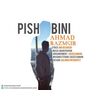 Ahmad Razmgir – Pishbini
